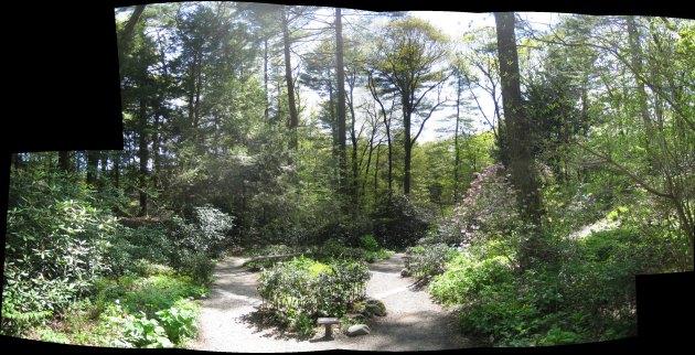 gardeninthewoods_small.jpg